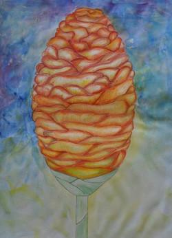 Coloured pencils & watercolour