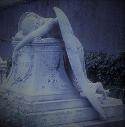 death angel (2).jpg