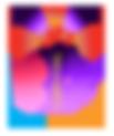 logo-mbc2017.png