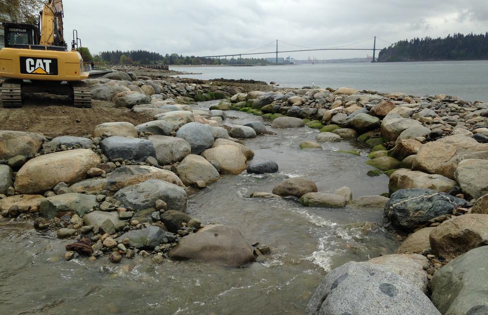 McDonald Creek Estuary Enhancement (6).j