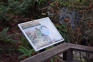 Viewing Platform - Brothers Creek (12).J