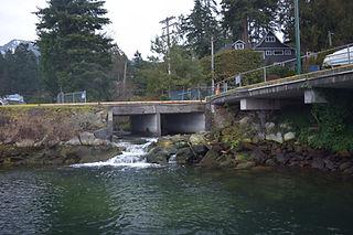 Nelson Creek Fish Ladder (1).JPG