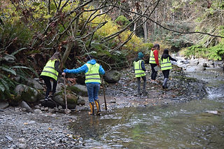 Spawner Salmon Surveys with Secondary St