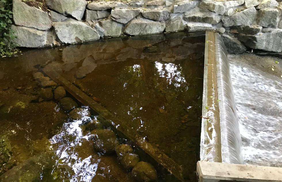 Lawson Creek Fish Ladder (6).JPG