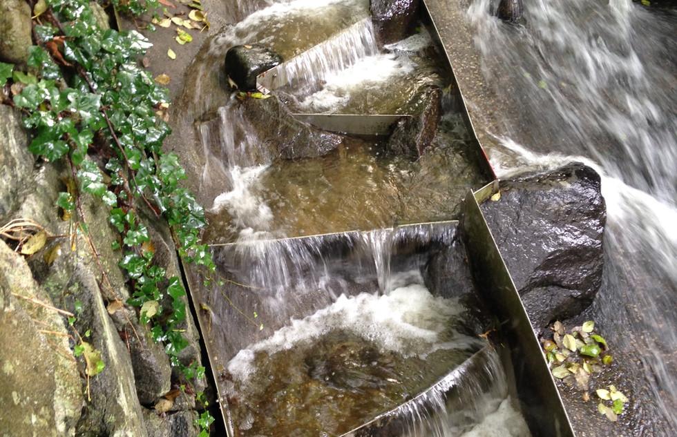 Lawson Creek Fish Ladder (1).jpg