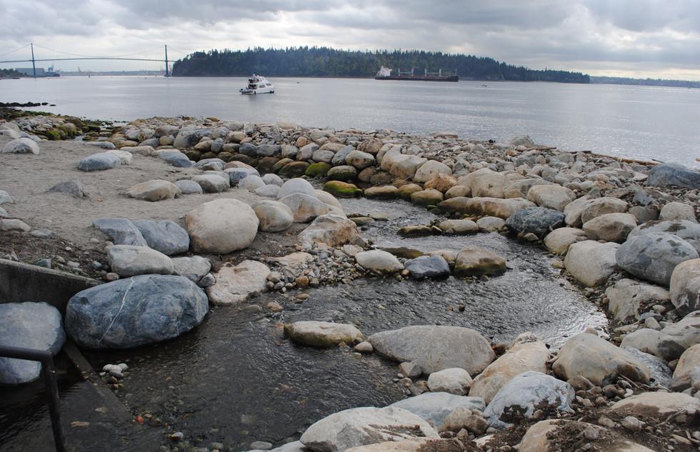 McDonald Creek Estuary Enhancement (7).J