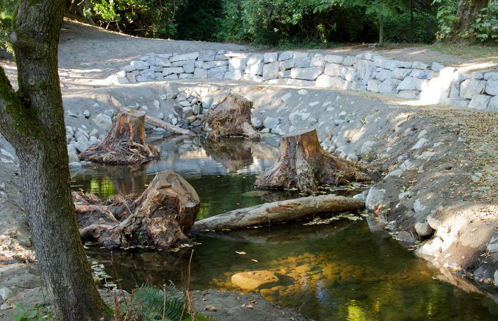 McDonald Creek rearing pond (5).jpg