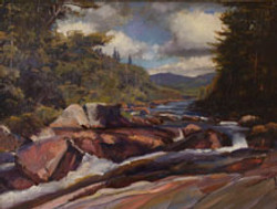 Study for Toll Dam