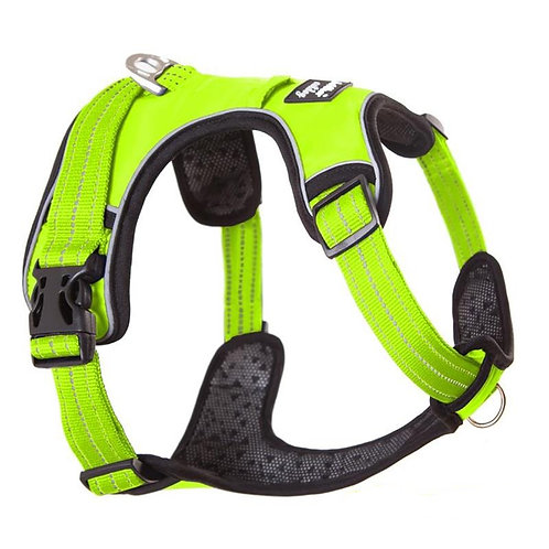Bella & Buddy Activewear Harness (pre-order only)