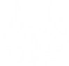 BGVF Icon White on Clear.png