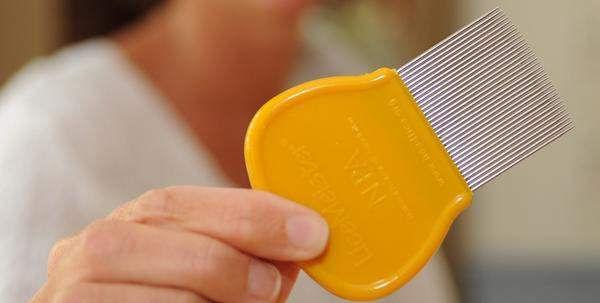MaryEllen LiceMeister, head lice comb