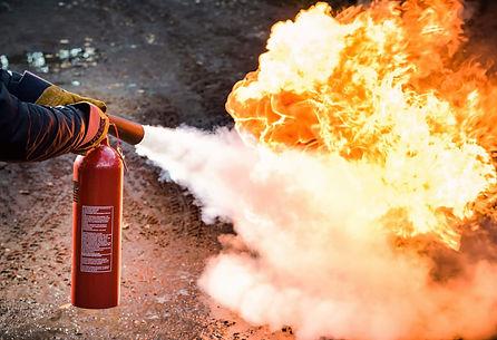 Fireguard picture.jpg
