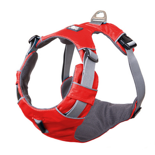 Bella & Buddy Reflective Harness (pre-order only)