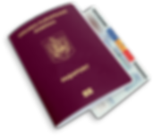 passport-type-2.png