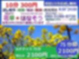 話し相手、電話話し相手、電話相談、悩み相談,相談相手,傾聴,女性スタッフ,無料お試し、恋愛相談、婚活、人間関係、話し相手サービス,hanasou8730.net、10分300円、初回無料、お試し無料、通話料無料、はなそう、花草、愚痴聴き、