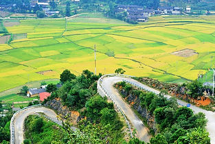 Road to Lung Cu
