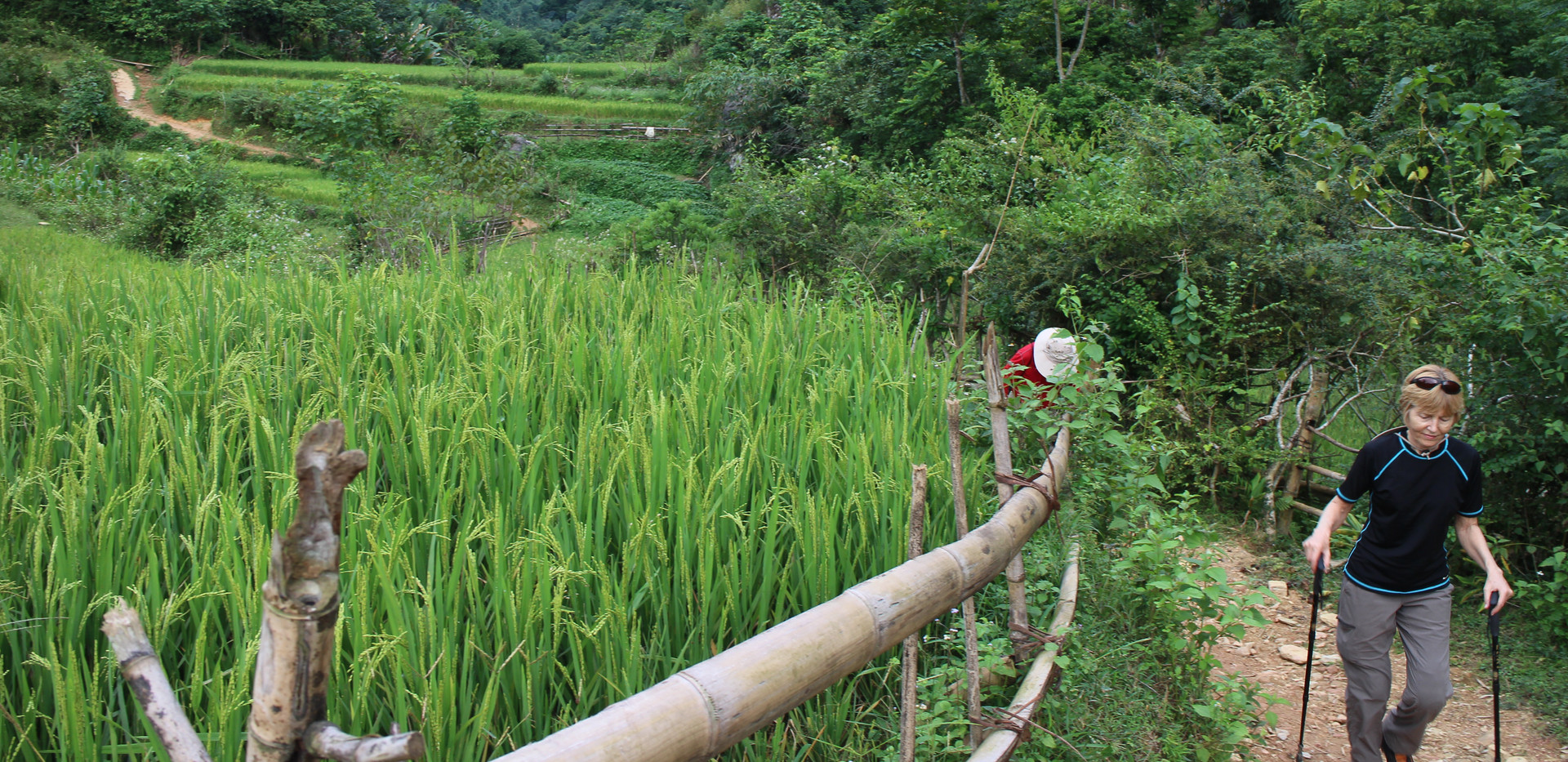 Bac son trekking path cross to the rice fields