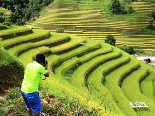 Havesting time in Ha Giang