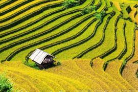 mu-cang-chai-The hidden places in Northern Vietnam