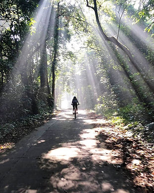 cuc phuong biking.jpg