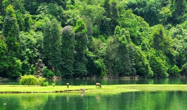 unique picture of the Thung Nham.jpg
