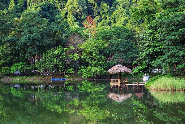 a lake in cuc phuong national park.jpg