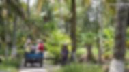 Motor Cart Ride