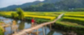 pu luong countryside