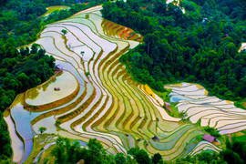 Ha Giang - Rice Fields - The hidden places in Northern Vietnam