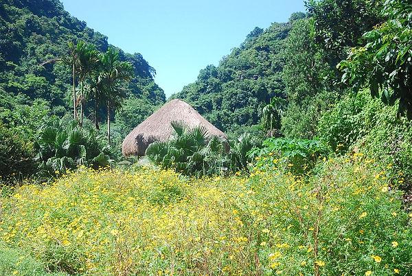 Lovely Valley in Thung Nham.JPG