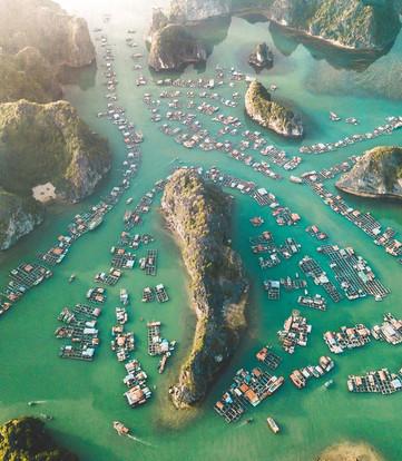 Lan Ha Bay.jpg