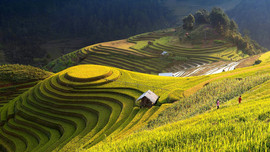 Mu Cang Chai The hidden places in Northern Vietnam