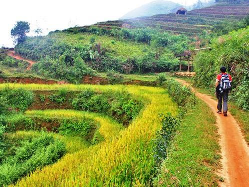Trekking à Hoang Su Phi