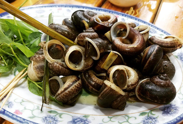 Ninh Binh Travel Guide Mountain Snail.jpg