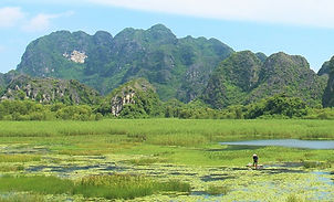 Tour to Van Long Ninh Binh