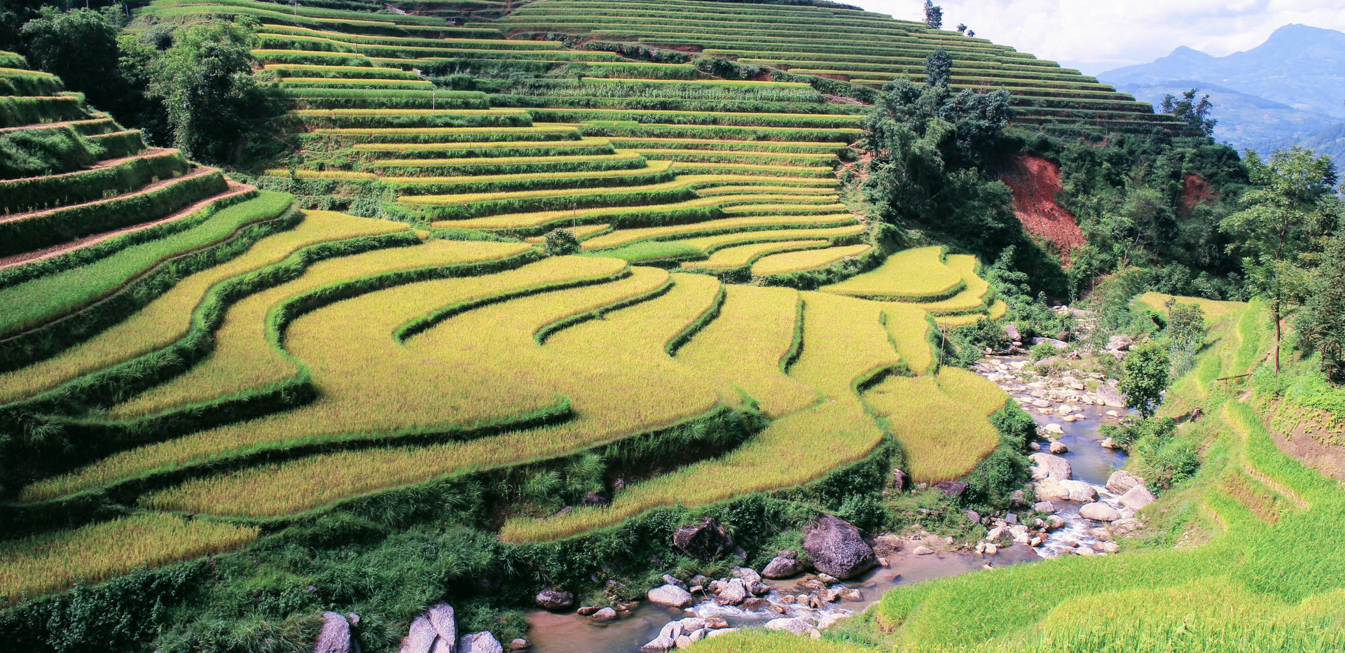 Beautiful landscape in Ha Giang