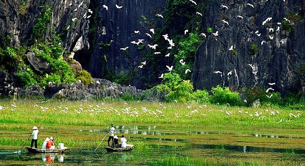 Thung-Nham Ecotourism.jpg