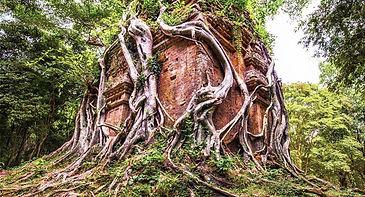 Sambo prei kuk temple