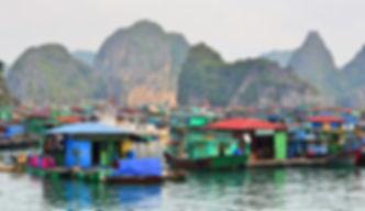 Cat-ba-fishing-village.jpg