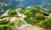 Sapa - pouring water season.jpg