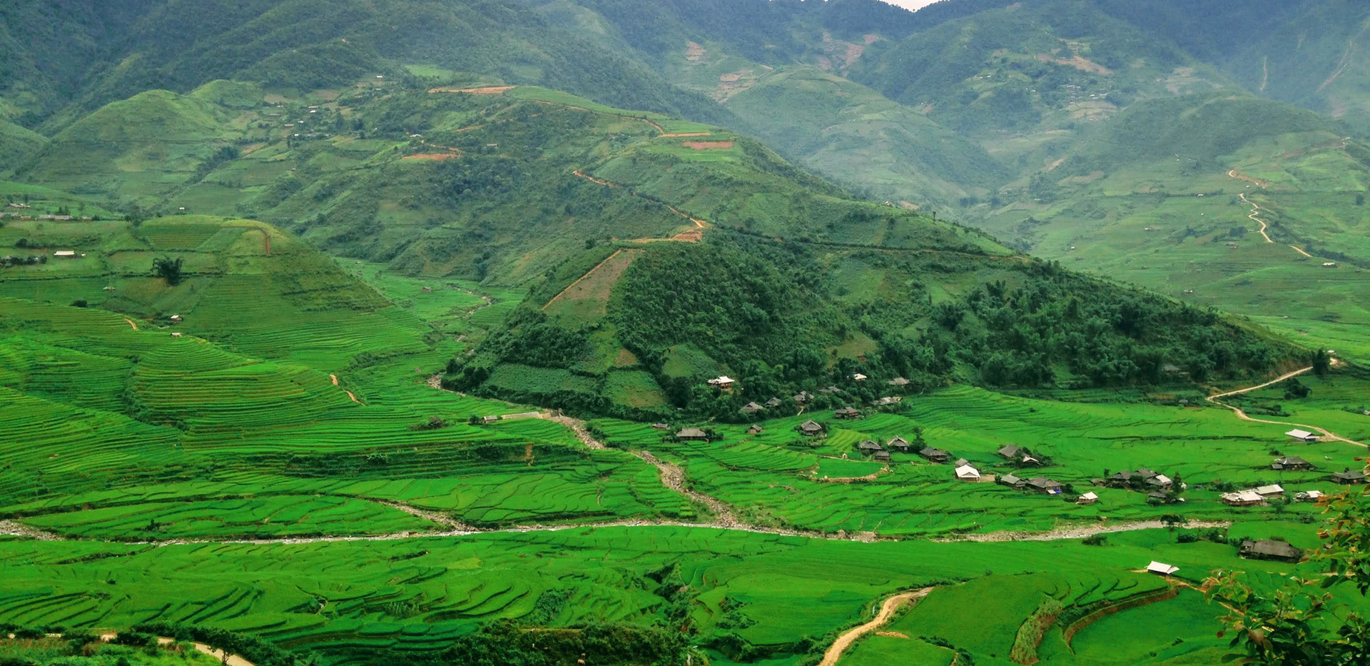 Trekking path in Mu Cang Chai