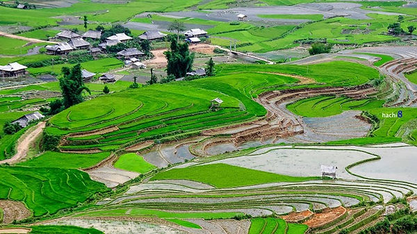 Lim-mong-village.jpg