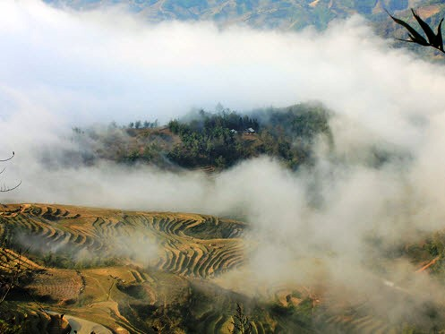 Cloudy Sapa