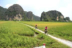 Ninh Binh Bike Ride.JPG