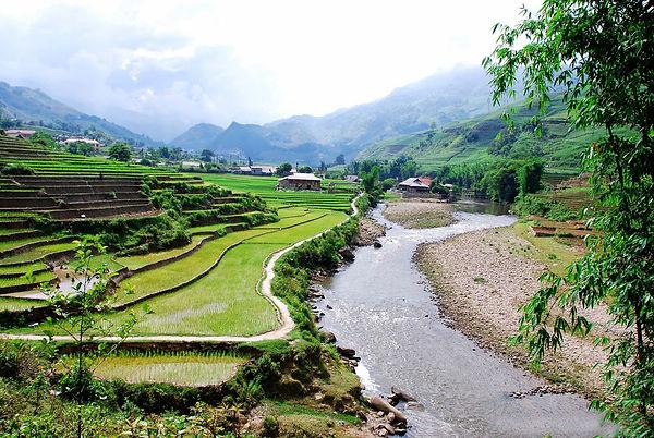 green season in ta van village.jpg