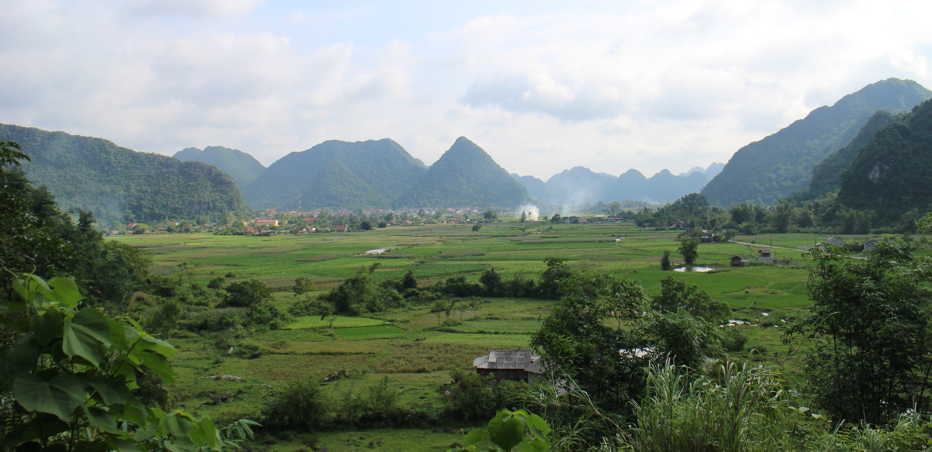 Green rice fields in Bac Son