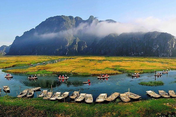 Ninh Binh Travel Guide van long in harvesting season.jpg