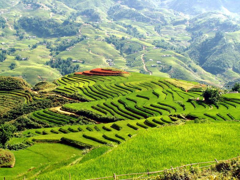 muong-hoa-valley-tour.jpg