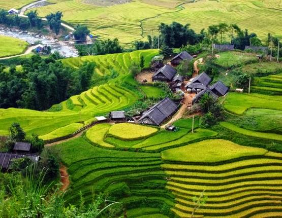 Sapa Terraces
