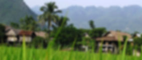 A village in Mai Chau